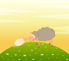 Free Family Of Cartoon Sheep Stock Photos - 15318883