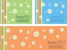 Free Set Of Backgrounds With Daisies Stock Image - 15318901