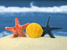 Free Beach Background Royalty Free Stock Photos - 15319658