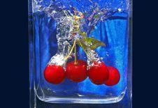 Free Cherries Royalty Free Stock Image - 15319956