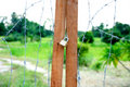 Free Barb Wire Door Royalty Free Stock Photography - 15324477