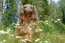 Free The Girl With Flowers Stock Images - 15320644