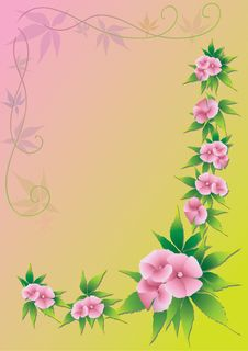Free Pink Flowers Stock Photos - 15320873
