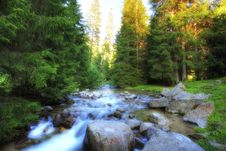 Alpine River Royalty Free Stock Photo