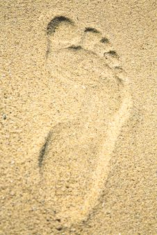 Free Footprint On A Sandy Beach In Summer Stock Photo - 15323790