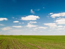 Free Green Field Stock Photo - 15326830