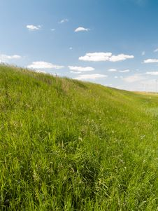Free Green Field Stock Photography - 15326872