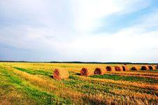 Belorussian Landscape Summer Harvest Royalty Free Stock Photos