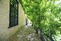 Free Gardens Of The Alcazar, Seville Royalty Free Stock Photos - 15330288