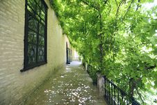 Free Gardens Of The Alcazar, Seville Royalty Free Stock Photos - 15330288