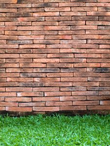 Free Brick Wall And Green Grass Stock Image - 15330491