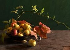 Free Still Life With Apples In A Dish Royalty Free Stock Images - 15331229