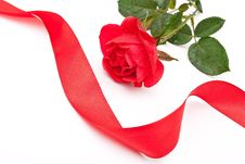 Free Red Rose With Red Ribbon Stock Photo - 15332250