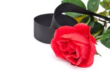 Free Red Rose With Black Ribbon Stock Images - 15332254