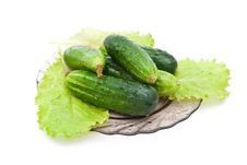 Free Cucumbers Stock Photography - 15332282