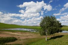 Free Beautiful Landscape In Grassland Stock Photography - 15332622