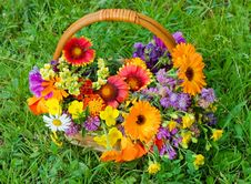 Free Beautiful Flowers In A Basket Stock Photography - 15334142