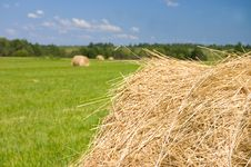 Free Haystacks Harvest Against The Skies Royalty Free Stock Photography - 15334277