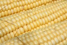 Corn Close-up Royalty Free Stock Photography