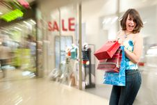 Free Happy Girl After Successful Shopping Stock Images - 15337494