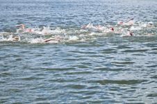 Free Swimming In Competition Race Royalty Free Stock Photos - 15337878