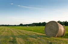 Free Field With Hay Bale Roll Royalty Free Stock Photography - 15337887