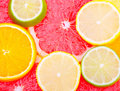 Free Mixed Citrus Fruit Stock Photos - 15342043