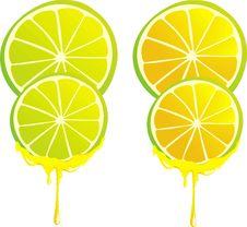 Free Stilyzed Vector Lemon Clove Stock Image - 15340521