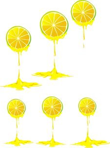 Free Stilyzed Vector Lemon Clove Stock Photography - 15340562