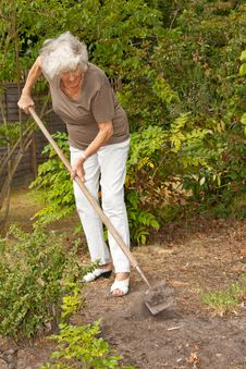Free Mature Lady Gardening Royalty Free Stock Images - 15341289