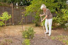 Free Senior Gardener Royalty Free Stock Photo - 15341325