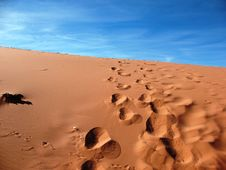Free Footsteps In Sand Dune Stock Photography - 15341812