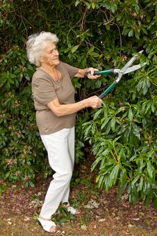 Free Garden Maintenance Stock Images - 15341994