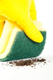 Cleaning Sponge Stock Image