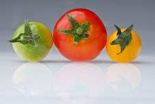Free Three Colors Of Cherry Tomato Stock Photos - 15344013