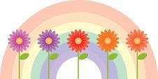 Free Flowers With A Rainbow Background Stock Photo - 15344470