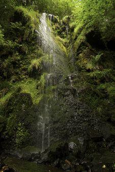 Free Waterfall Stock Photo - 15345320