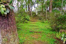 Free Generic Walkway In Park Stock Image - 15348161