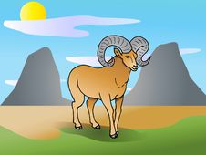 Free Long Horn Goat On Nature Royalty Free Stock Images - 15349519