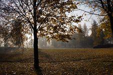 Free Seasons (autumn) Stock Photography - 15349882