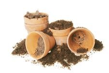 Terracotta Plant Pots And Soil Stock Photography