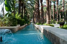Fountain Surrounded By Palm Trees. Stock Images