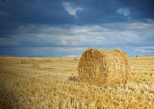 Free Straw After Harvest Stock Photography - 15351712