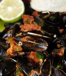 Free Boiled Shellfish Stock Photo - 15353900