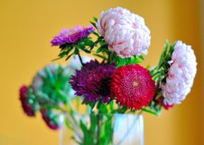 Free Bunch Of Beautiful Flowers In A Vase Royalty Free Stock Photo - 15354145