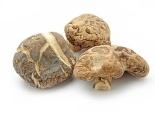 Free Dried Mushrooms Royalty Free Stock Photos - 15359528