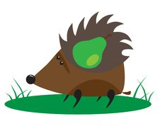 Free Hedgehog With Pear Stock Photo - 15359660