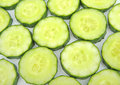 Free Cucumbers Slice Stock Photography - 15363352