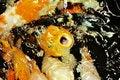 Free Koi Fish Royalty Free Stock Photos - 15369298