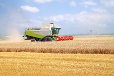 Free Combine For Harvesting Wheat Royalty Free Stock Photography - 15366487